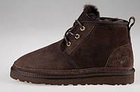 Ботинки мужские Ugg Australia Neumel, мужские угги неумел замшевые коричневые, угги мужские