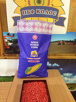 Гибрид кукурузы от производителя