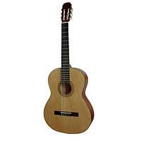 Классическая гитара MAXTONE CGC3902