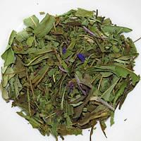 Іван-чай (Кипрей)