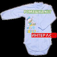 Детский боди с длинным рукавом р. 74 демисезонный ткань ИНТЕРЛОК 100% хлопок ТМ Алекс 3149 Голубой1
