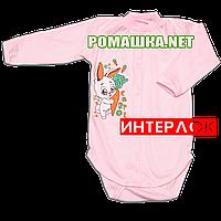 Детский боди с длинным рукавом р. 80 демисезонный ткань ИНТЕРЛОК 100% хлопок ТМ Алекс 3149 Розовый1
