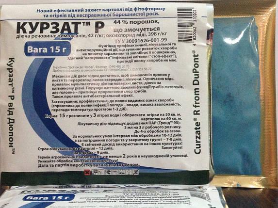 Фунгицид Курзат Р, 15 г — для защиты огурцов, овощей. Он не перепадов температур! Используется в теплицах, фото 2