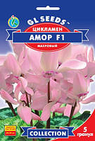 Семена Цикламен Амор F1  5 штук