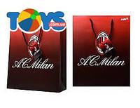 Пакет бумажный подарочный Milan, ML14-266K
