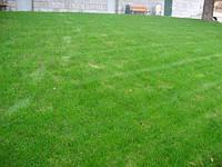 Спортивный газон - для футбола и сильных нагрузок