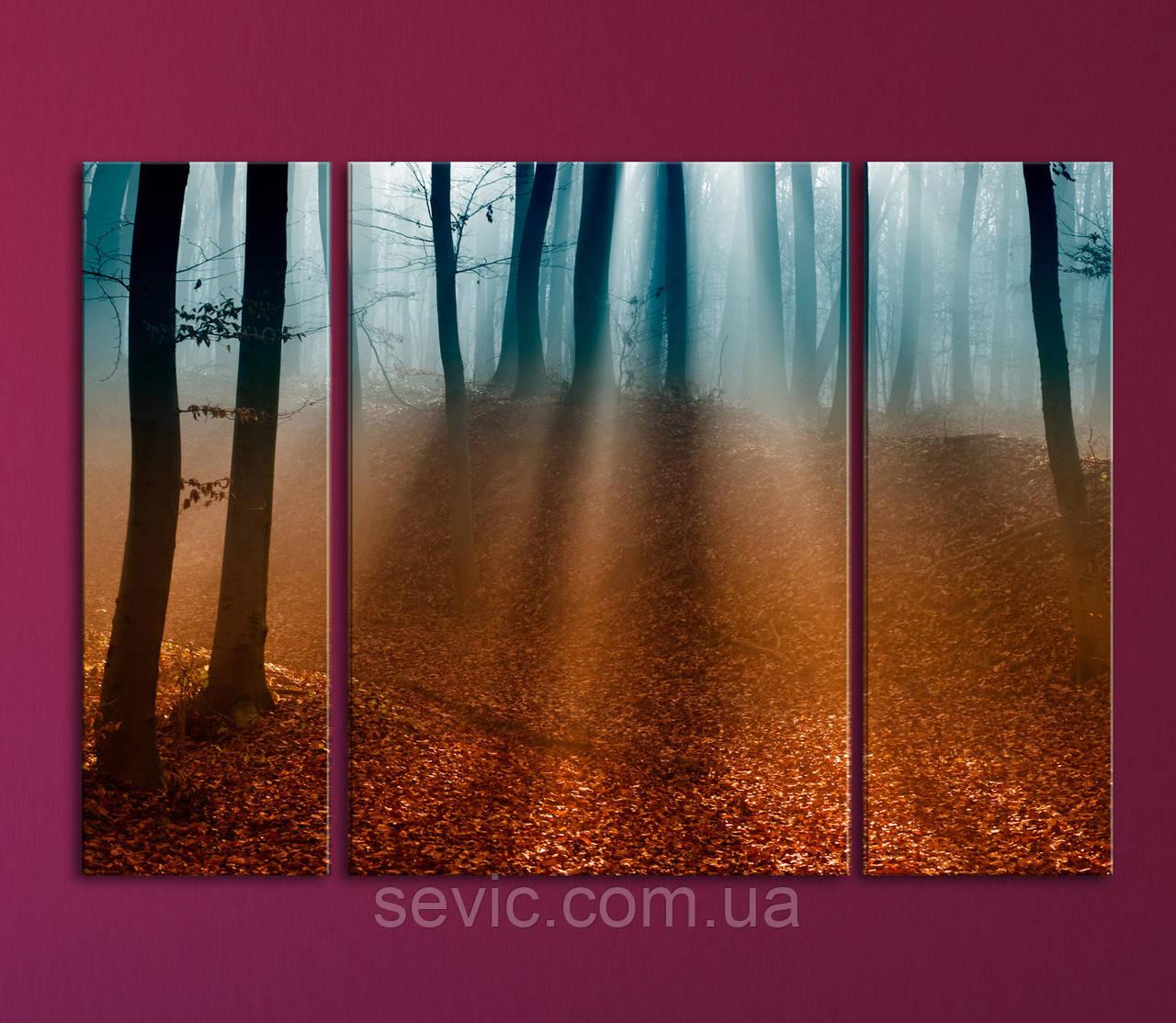 """Модульная картина """"Утренний лес"""""""