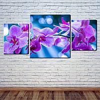 """Модульная картина """"Яркая орхидея"""""""