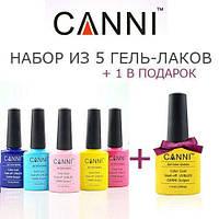 Акция! 5 гель-лаков CANNI + гель-лак CANNI в подарок!