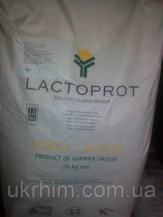 Лактоза, фото 2