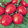 Семена томата Искорка весом 50 грамм