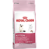 ROYAL CANIN Kitten 36 10 kg