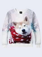 Світшот 3D пес і шарф / свитшот 3D, фото 1