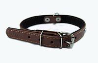 Ошейник для собак COLLAR с синтепоном и украшениями, 20мм/ 40см, коричневый 0139-5