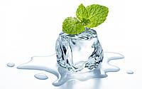 Ароматизатор Cool Mint (Мята) Capella , USA