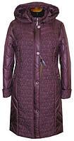 Куртка женская Батал 10-014 - лиловый: 64,66