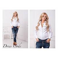 Рубашка  модная  женская DG