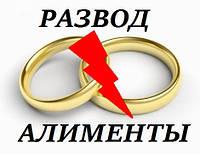 Развод. Расторжение брака, взыскание алиментов, раздел иммущества Бровары, Броварской район