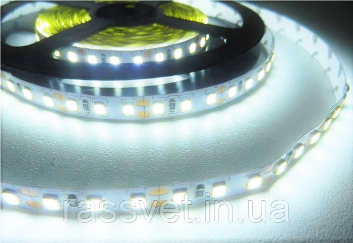 Светодиодная лента SMD 3528 (120 LED/m) IP20Standart