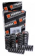 Пружины сцепления Ferodo FSS0204