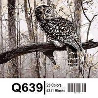 "Q639 ""Сова в зимнем лесу"" Роспись по номерам на холсте 40х50см"