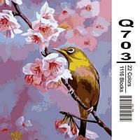 """Q703 """"Колибри на яблоневой ветке"""" Роспись по номерам на холсте 40х50см"""