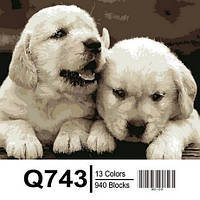 """Q743 """"Маленькие лабрадоры"""" Роспись по номерам на холсте 40х50см"""