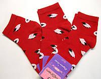Носки в овечки красного цвета женские заниженные