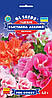 Семена Годеция Выставка азалий 0,2 г