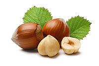 Масло Лесного ореха 1 литр