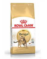 ROYAL CANIN Bengal Adult 10 kg