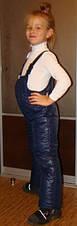 Зимний детский полукомбинезон синий, р.98-110, фото 3