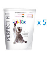 PERFECT FIT Junior курица 0.75 kg x5