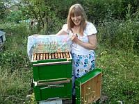 Зоя и ее любимые пчелки))
