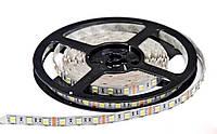Светодиодная лента SMD 5050 (60 LED/m) IP20 Premium, фото 1