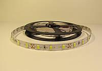 Подсветка в салон маршрутки (Белый ,холодый цвет) Светодиодная лента 2835 60 led