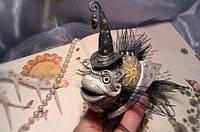 """Рыбка """"Серый Звездочет"""""""