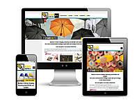 Корпоративный сайт интернет магазин