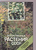 Лекарственные растения СССР. Культивируемые и дикорастущие растения. Фотоальбом