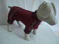 Комбинезон для собак Флис №6,5 универсальный 66х104 (болонья, флис), фото 1