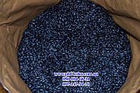 Семена подсолнечника гибрид - ЗЛАТСОН (F-1, фракция Экстра)