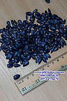 Семена подсолнечника гибрид - ЯСОН (ЭКСТРА)