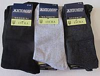 Набор носков Житомир(12 пар)