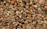 Тополь лесной колотый 30-40см