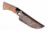 Нож охотничий Острый нос, с кожанным чехлом, рукоятка дерево, гравировка, охота, ножи, фото 2