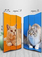 Ширма двусторонняя Милые коты (высота 180 см)