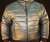 Куртка мужская зимняя, фото 1