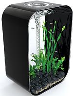 Аквариум Biorb  Life Square 60л черный (P6000BLK /0394)