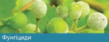 Фунгициды, протравители (средства от болезней растений)