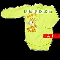 Детский боди с длинным закрытым рукавом р.56 с начесом ткань ФУТЕР (байка) 100% хлопок ТМ Алекс 3188 Зеленый А